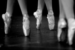 A Choreographed Life